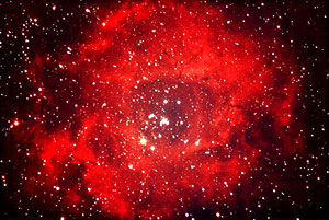 Rose nebula: 'and the fire and the rose are one'