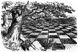 The chessboard in Through the Looking Glass, by Lewis Carroll