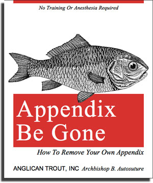 How to remove your own appendix (book cover)