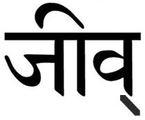 Jiv in Sanskrit